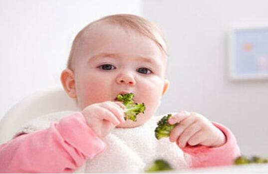 宝宝食物营养补充